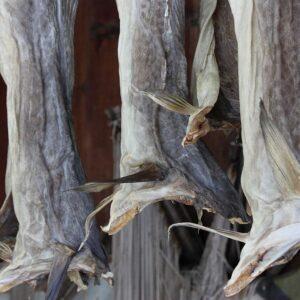 Norwegen Stockfisch