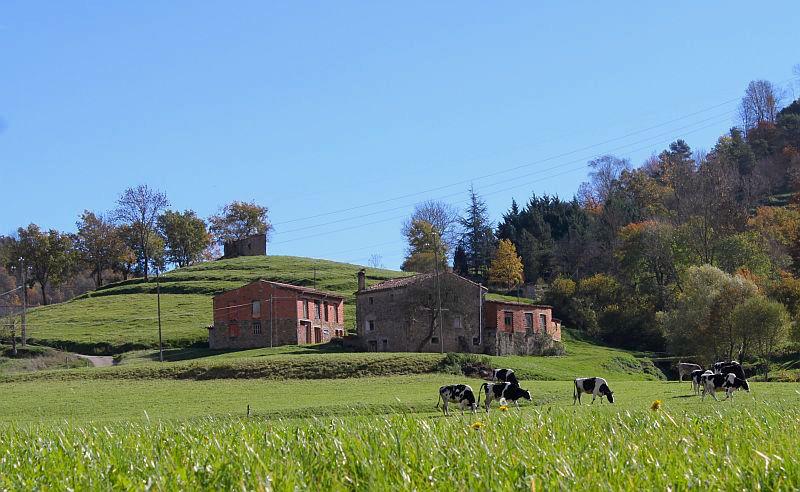 Grüne Landschaft vor den Pyrenäen