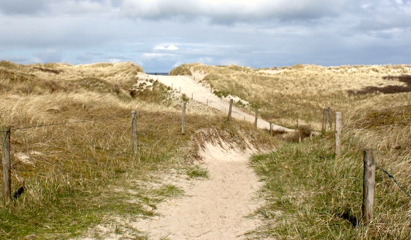 Weg durch Dünenlandschaft