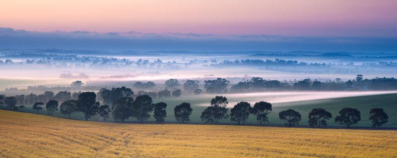 Clare Valley Australien