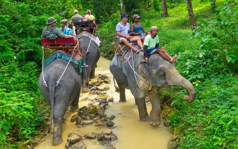 Zwei Elefantenreiten-Gruppen treffen sich auf engem Flußpfad