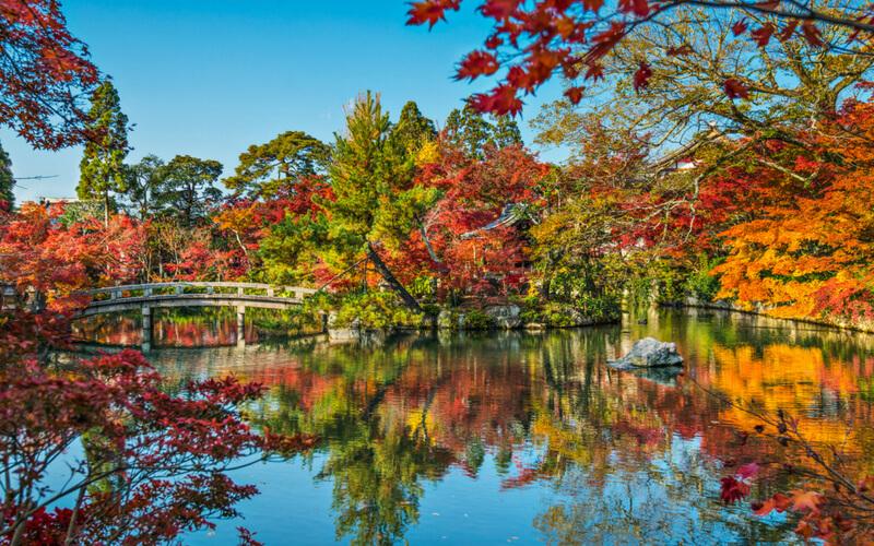 Herbstlaub in Kyoto