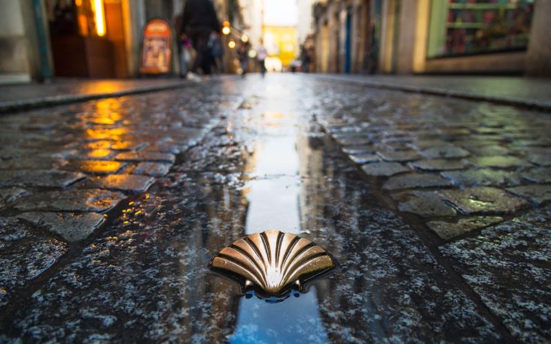 Pilgerreisen: So weit die Füße tragen