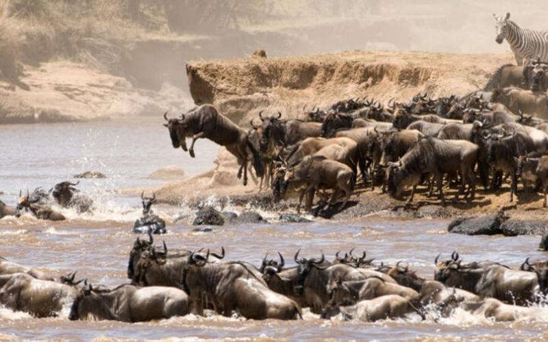 Kenia – Ein atemberaubendes Land versucht auf die Beine zu kommen